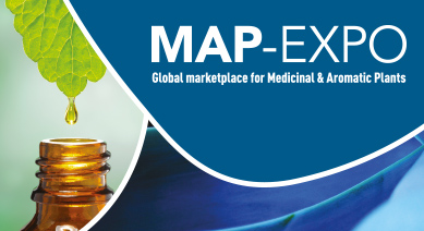 Map Expo